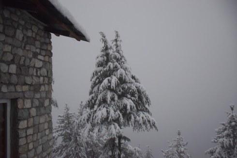 Snowfall in January.
