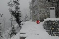Have you ever enjoy snowfall ?