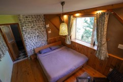 tirthan-valley-stay-eagle-nest-89